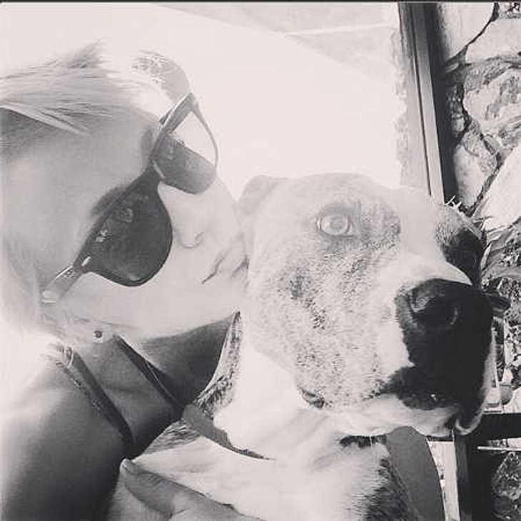 Kaley Cuoco: Ihr Hund Norman ist alles für sie!