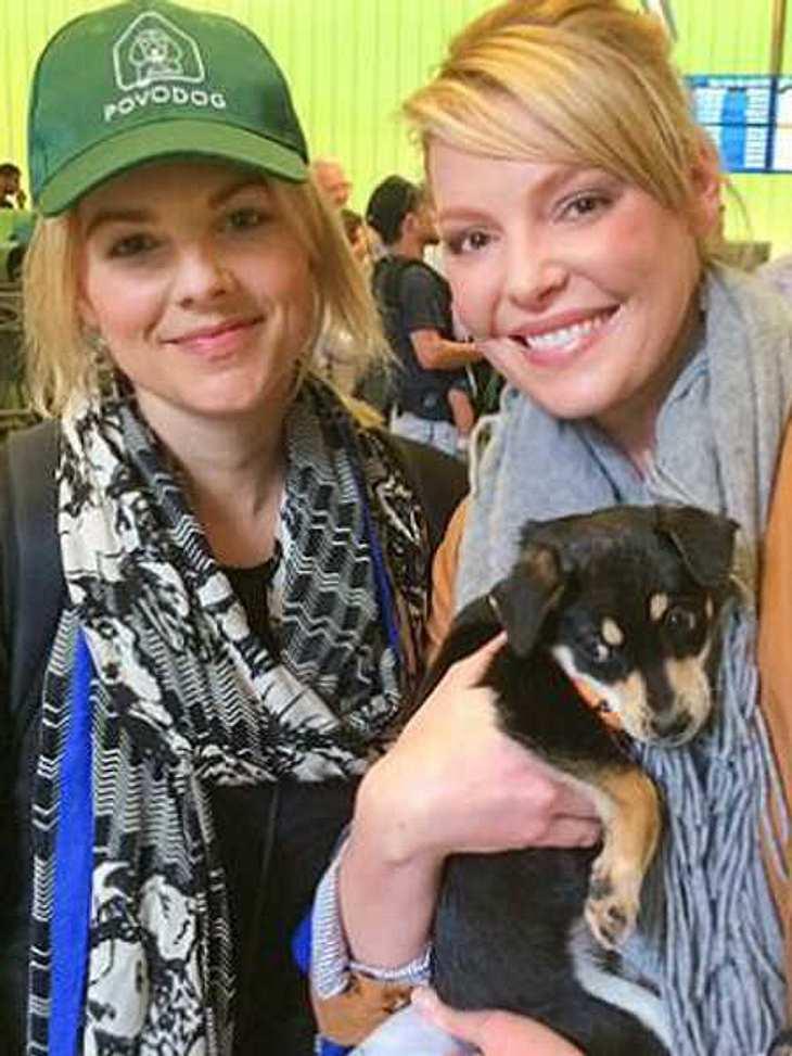 Katherine Heigl hat zwei Hundewelpen geholfen.