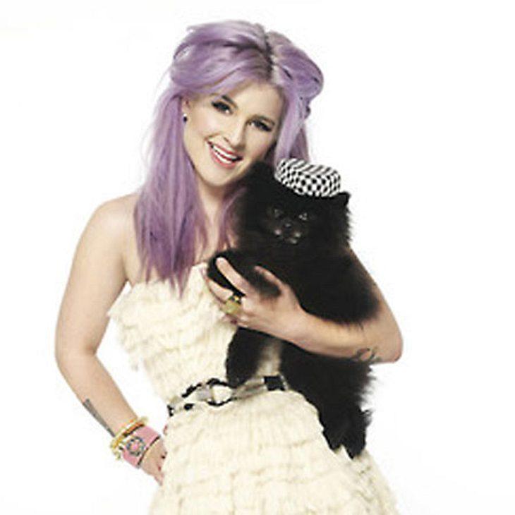 V.I.Pets: Stars lieben ihre HundeTierische Modelqualitäten: Eigentlich sollte Kelly Osbourne (27) alleine für ein Magazin-Shooting vor der Kamera posieren. Ihr Zwergspitz Sid stahl ihr jedoch die Show und setzte sich so gekonnt in Szene, da