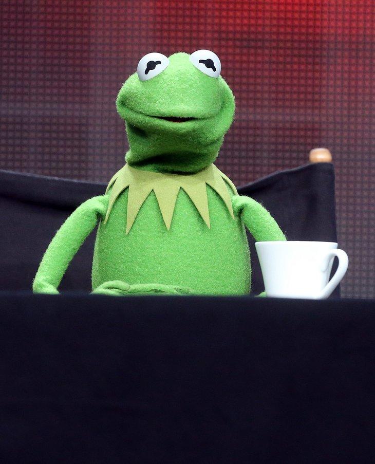 Steve Whitmire: Disney feuert die Stimme von Kermit!