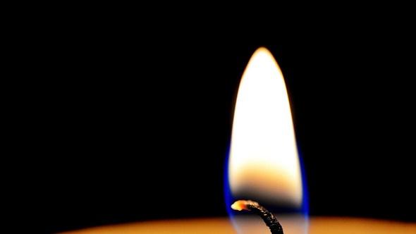 Freddie Combs ist tot - Foto: IMAGO / agefotostock