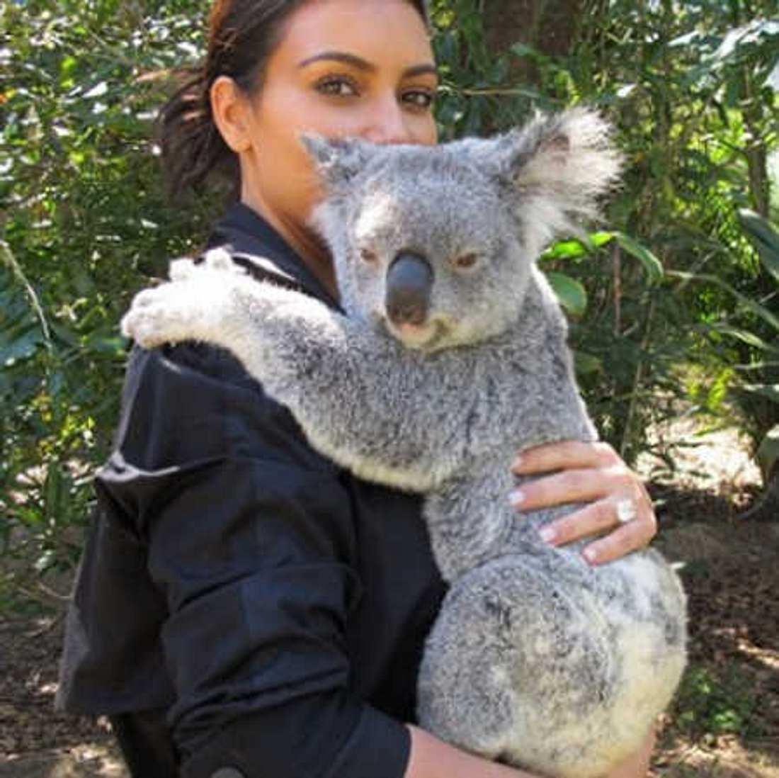 Kim Kardashian kuschelt mit Koala-Bären!