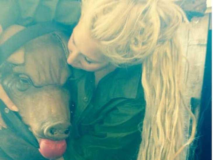 Schwein gehabt? Lady Gaga mit dem Kopf einer Sau. Was es damit genau auf sich hat, ist nicht bekannt. Auch nicht, ob das Schwein aus Plastik oder echt ist.