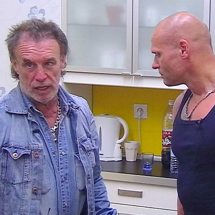 RTL-Sommerhaus: Müffel-Jacke sorgt für neuen Mief