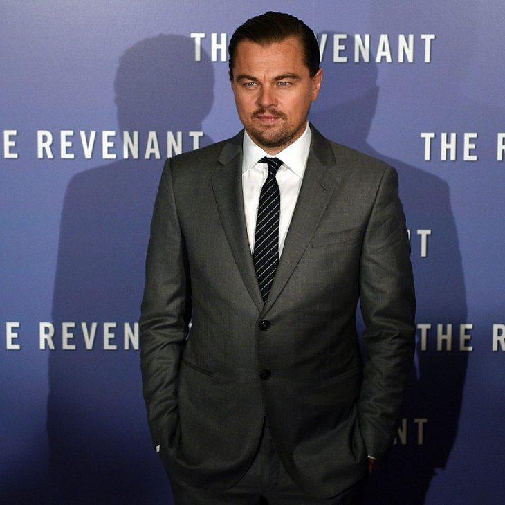 Leonardo DiCaprio spendet mit seiner Stiftung 15 Millionen Euro