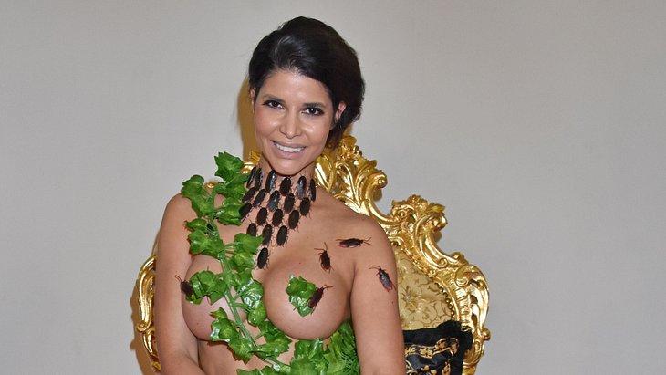 Micaela Schäfer will sich die Brüste vergrößern lassen