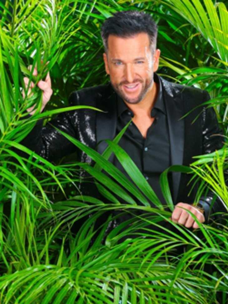 Dschungelcamp 2014: Michael Wendler bittet seine Fans um Hilfe