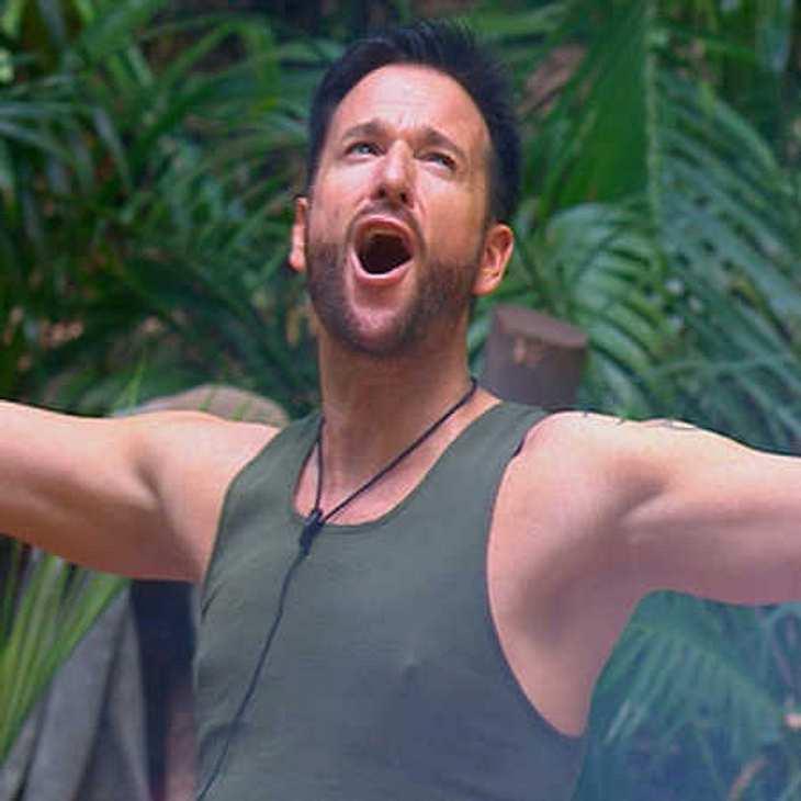 Michael Wendler nervte im Dschungel mit seiner neuen Single