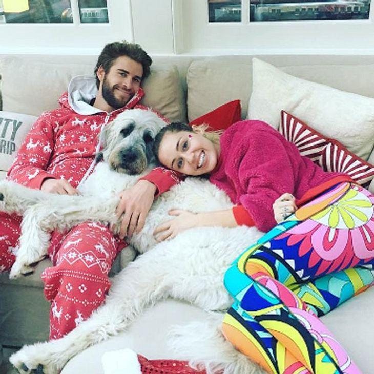 Miley Cyrus & Liam Hemsworth: Heimliche Hochzeit