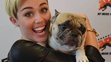 Miley Cyrus verrät ihr Geheimnis - Foto: Radio ENERGY