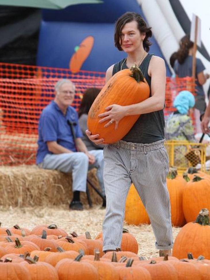 Happy Halloween! Stars im Kürbis-FieberBesser als Krafttraining: Die Schauspielerin schleppt den XXL-Kürbis eigenhändig nach Hause.