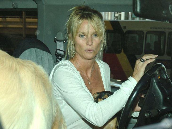 """Stars ungeschminktEx-""""Desperate Housewives""""-Stars Nicolette Sheridan fährt gerade ihre Hunde aus, für ein Styling hat es da nicht mehr gereicht. Aber so schlimm ist es nicht, Nicolette kann sich das immernoch leisten."""