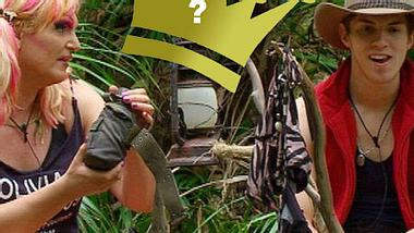 Wer wird Dschungelkönig?
