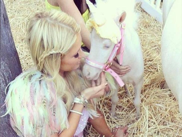Da werden Mädchenträume wahr! Paris Hilton (32) ist jetzt stolze Pony-Besitzerin. Und das neue Haustier der Hotelerbin trägt natürlich auch gleich den passenden Namen: Es heißt nämlich Coco Chanel...
