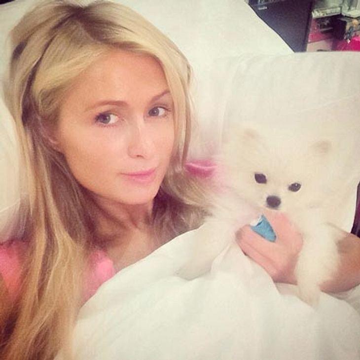 Paris Hilton postete bereits ein Bett-Selfie