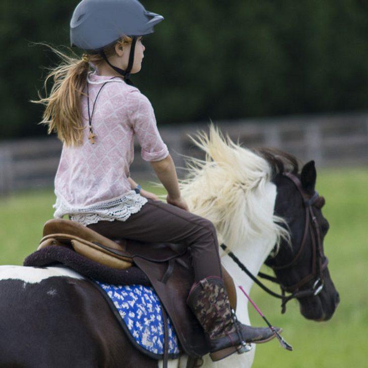 Mädchen (4) stürzt von Pony - tot