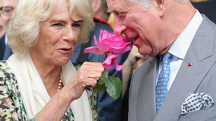 Betrügt ihn Camilla seit fünf Jahren mit einem Anderen?