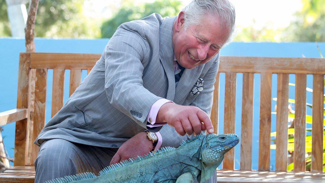 Prinz Charles hat viele Extrawünsche