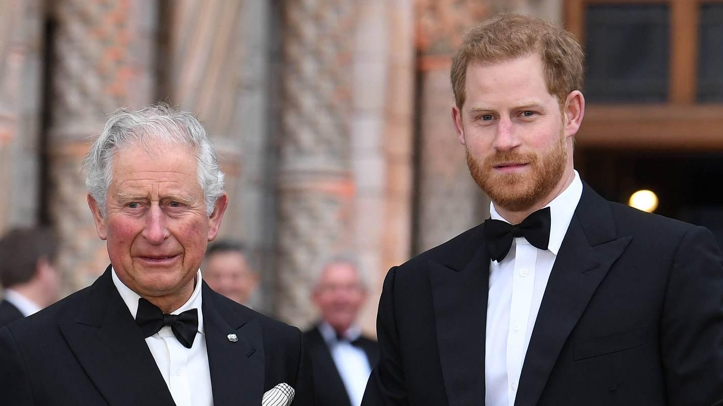 Prinz Charles Prinz Harry