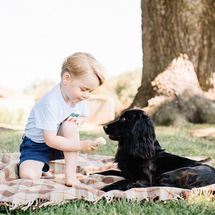 Prinz George: Ärger wegen diesem Foto