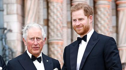 Prinz Harry und Prinz Charles - Foto: GettyImages