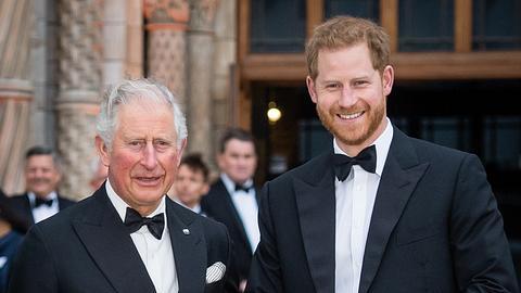 Prinz Charles und Prinz Harry - Foto: GettyImages