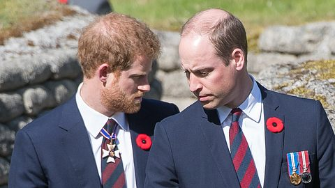 Prinz Harry und Prinz William - Foto: GettyImages
