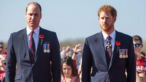 Prinz William & Prinz Harry - Foto: GettyImages