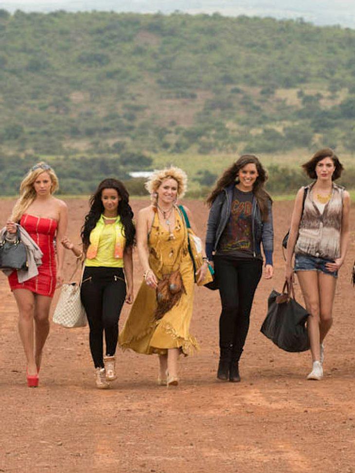 Reality Queens auf Safari: Schräge Busen-Werbung!
