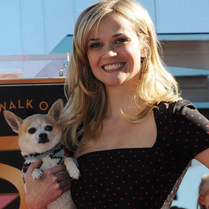 """Reese Witherspoon wünscht sich """"Natürlich blond""""-Fortsetzung!"""