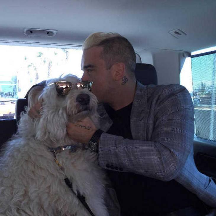 Robbie Williams vermisst seinen Hund sehr