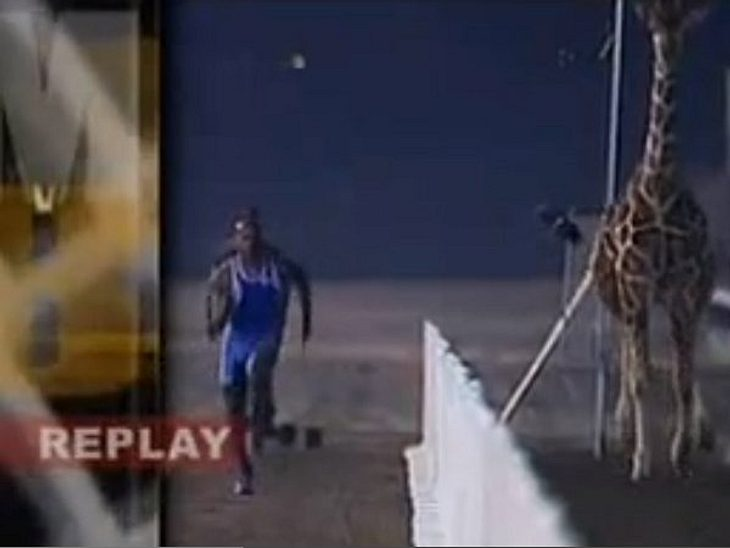"""11 schlimmste TV-Formate der USAPlatz 6: """"Man vs. Beast""""Eines dieser Formate, wo man sich nur denkt: """"Was soll das?!?"""" Das Konzept ist einfach: Mann gegen Tier. In den verschiedensten Spielen tritt ein Mensch, der eine b"""