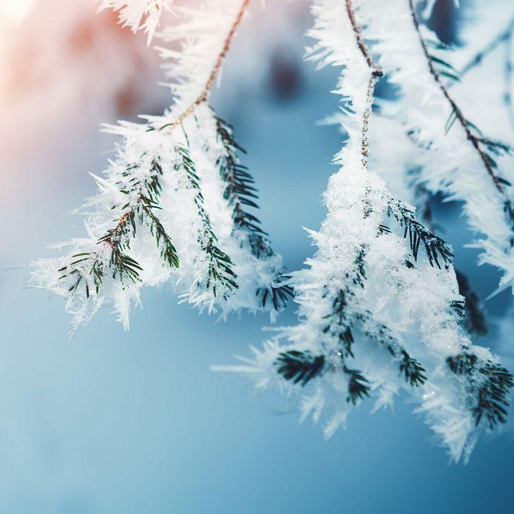Extremer Wintereinbruch: Es droht Schnee bis ins Flachland!