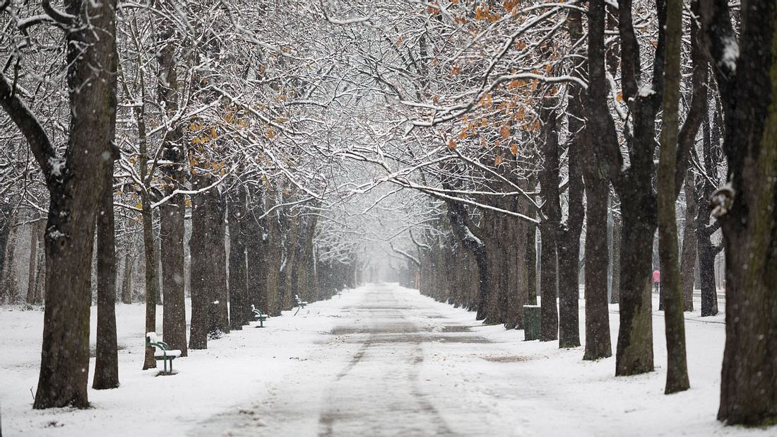 Schnee, Glätte & Frost: In dieser Region wird es richtig kalt!