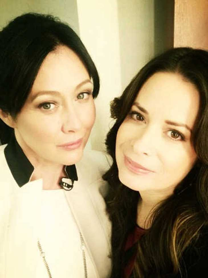 Charmed: alle News & Infos bei InTouch