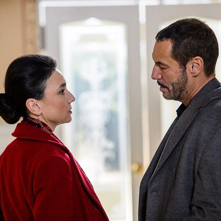 AWZ: Fängt Simone eine Affäre mit Vincent