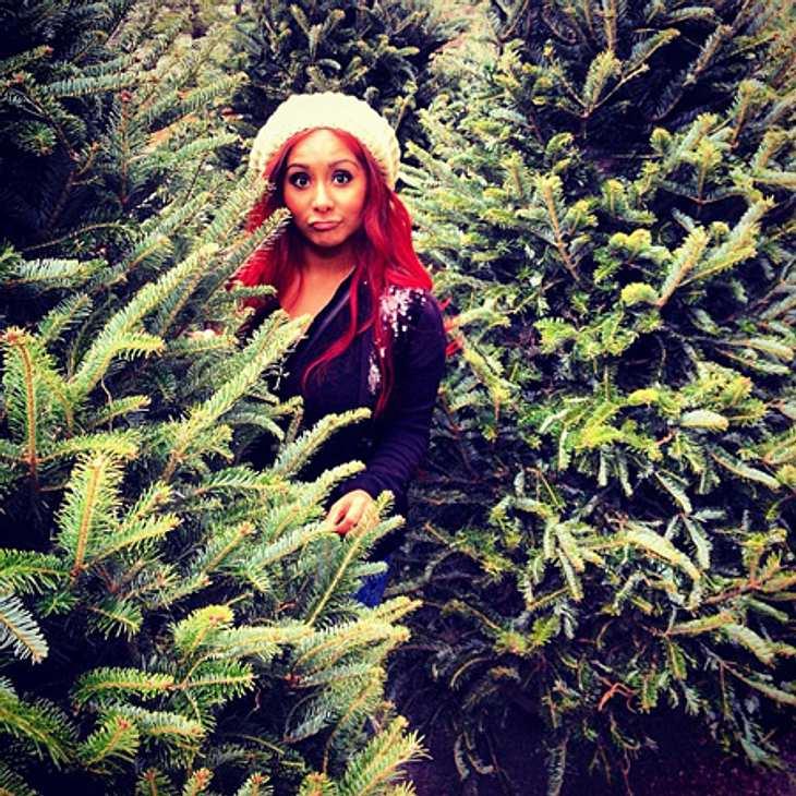 Ho Ho Ho - Stars im WeihnachtsfieberOb sich Snooki (25) nicht entscheiden kann, welchen Baum sich möchte? Oder warum zieht sie sonst so eine Schnute?