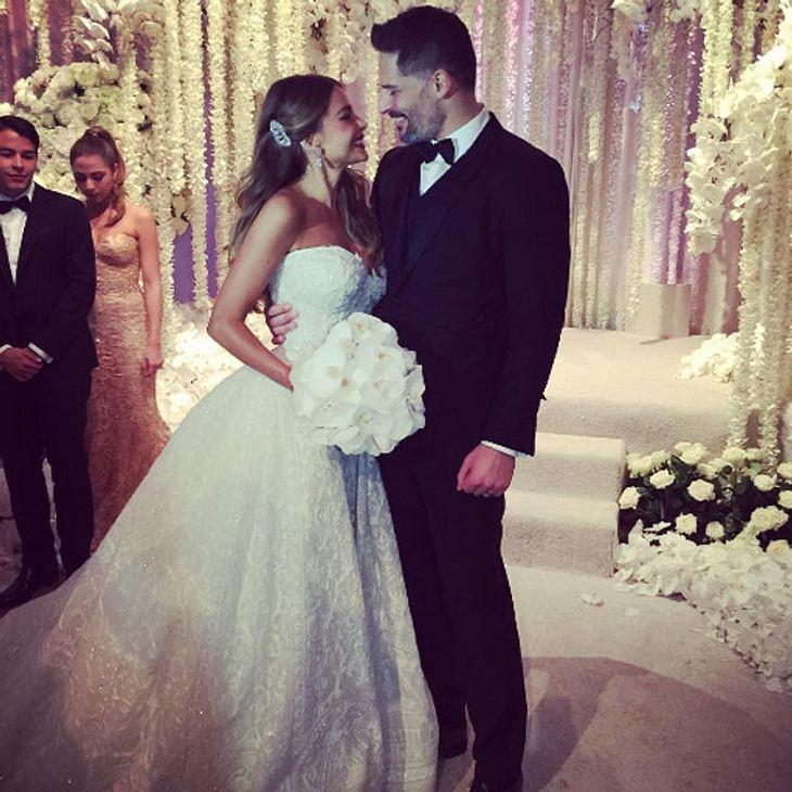 Sofia Vergara Hochzeit