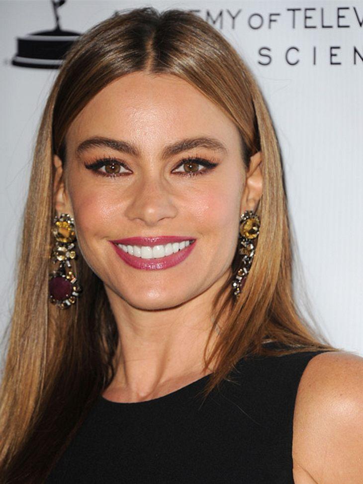 Sofia Vergara ist die Topverdienerin im US-Fernsehen.