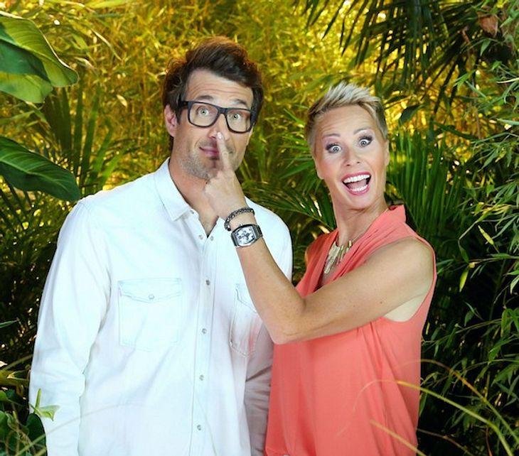 Dschungelcamp: War es die letzte Staffel? Jetzt redet RTL!
