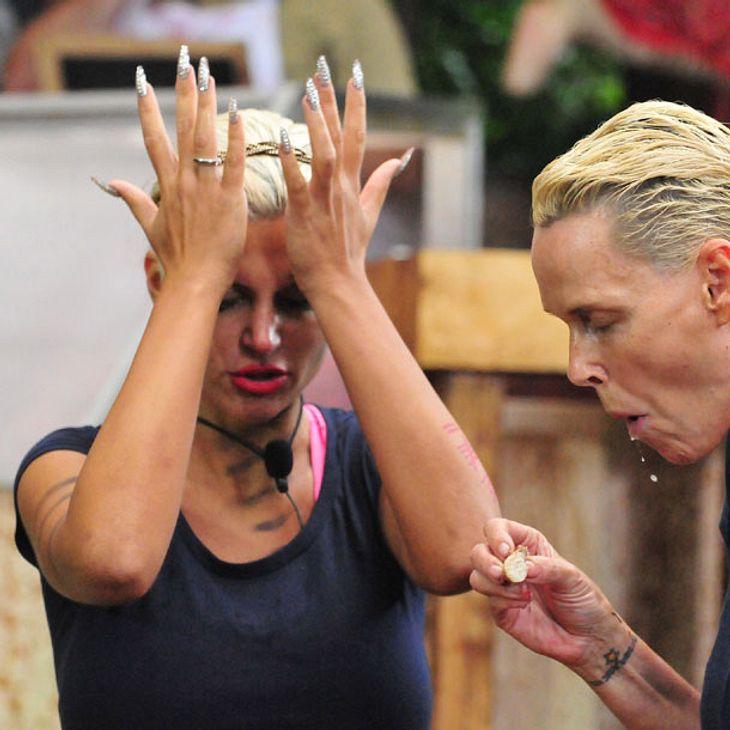 Sophia Wollersheim macht Brigitte Nielsen wunderliche Komplimente