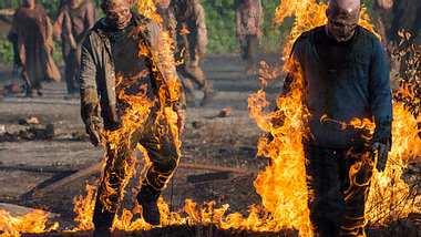 Drama am Set von The Walking Dead: John Bernecker verunglückt bei Dreharbeiten - Foto: AMC