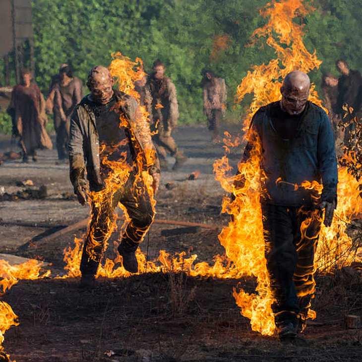 """Drama am Set von """"The Walking Dead"""": John Bernecker starb bei Dreharbeiten"""