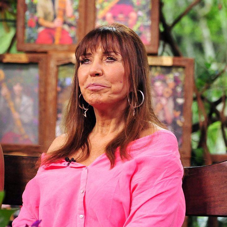 Tina York Lebensgefährte