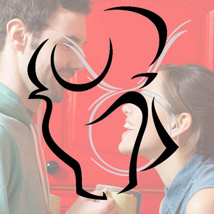 Typologie: Wie viel reden Stiere?,Stier: Schluckt und schluckt und schweigt. Lässt sich aus Phlegma oder auch aus Gutmütigkeit jegliche Gemeinheit an den Kopf werfen, bevor er platzt  und seine große Wutansprache beginnt. Der Stier hört zu,