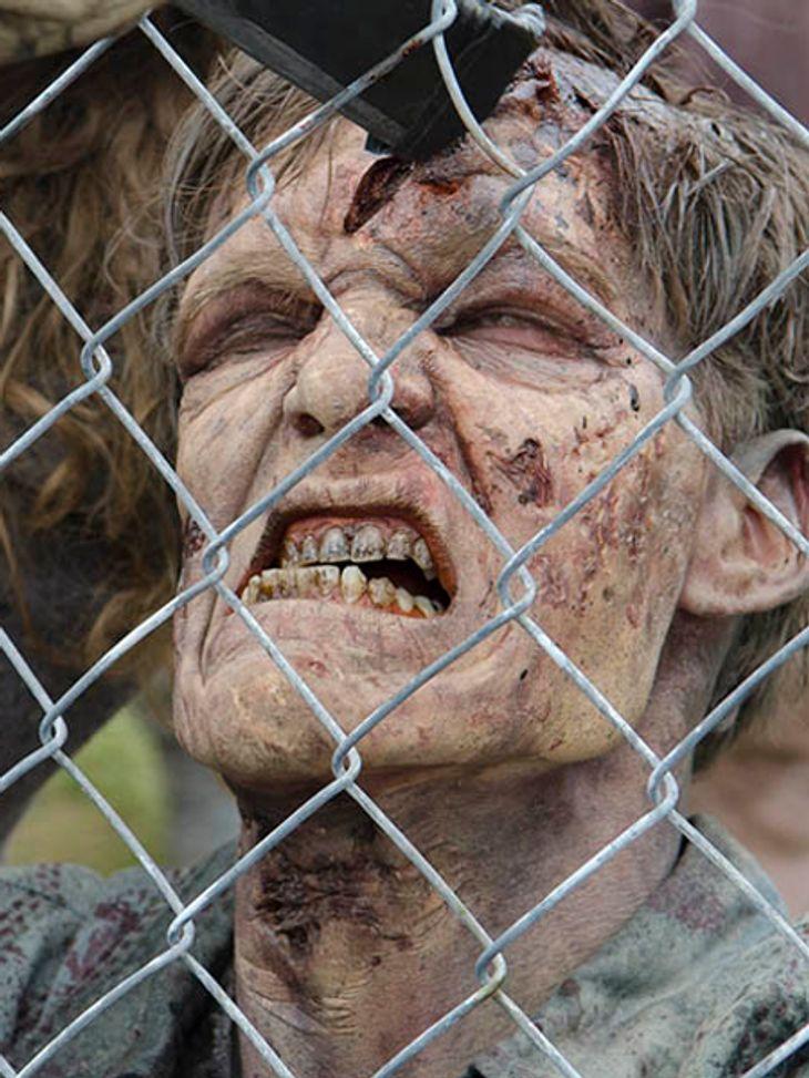 """The Walking Dead"" ist bei den Fans immer noch beliebt"