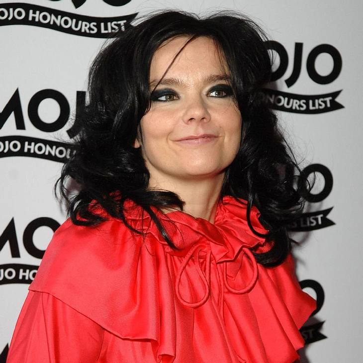 Björk verkauft Pussy Riot-Shirts