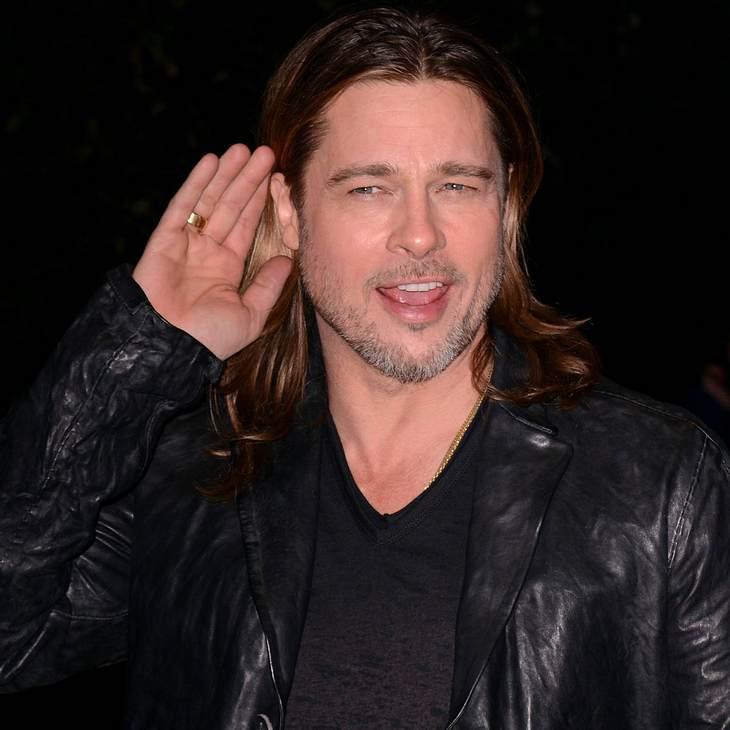 Brad Pitt baut Kindern Streichelzoo