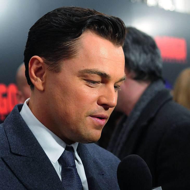 Leonardo DiCaprio: Karriere-Pause