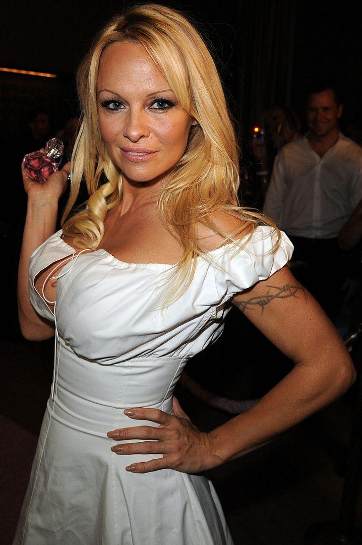 Pamela Anderson plant Popkarriere